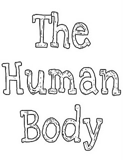 1000+ images about Human Body Unit on Pinterest