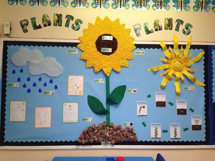 Plants, Pollen, Seeds, Grow, Flower, Leaf, Water, Rain