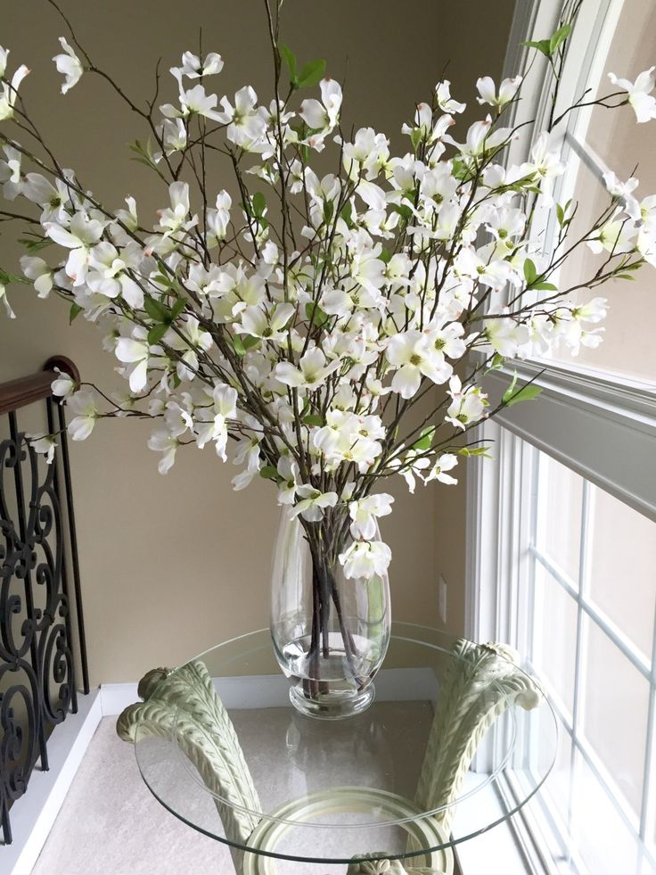Beautiful Dogwood branches in large glass vase  Beautiful
