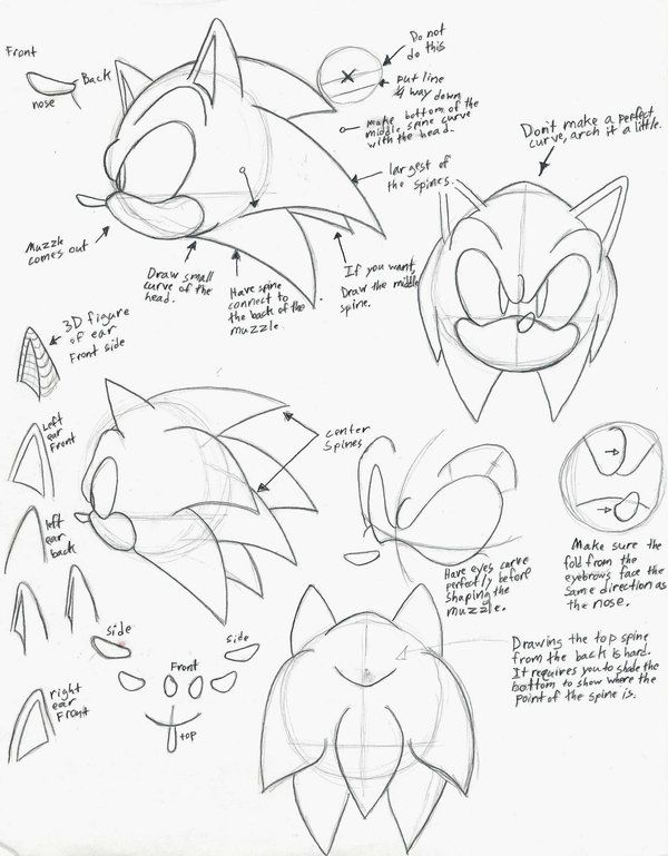 1000+ images about Drawing Tutorials on Pinterest