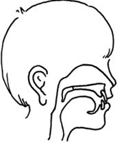1000+ images about Speech therapy-cleft palate on