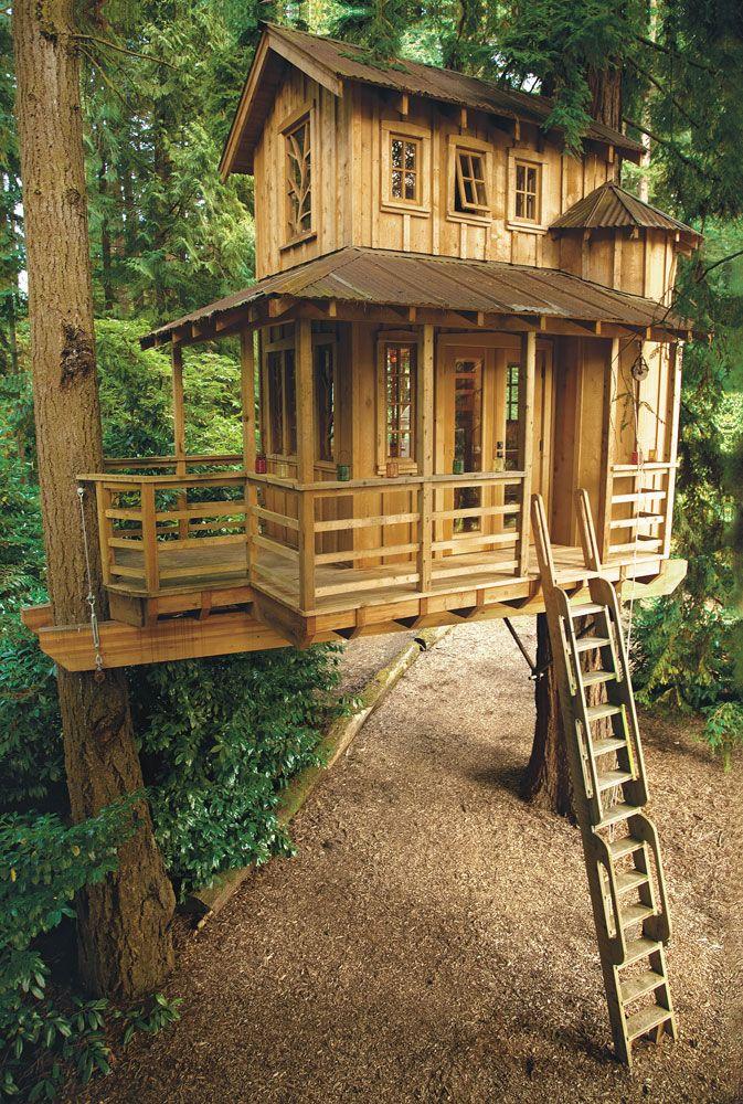 25 Best Treehouse Ideas On Pinterest Tree Houses Treehouse