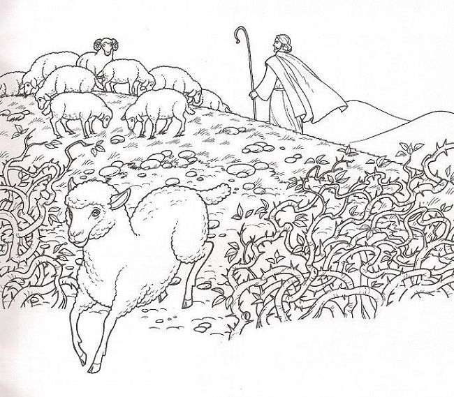 10 Best images about The Lost Sheep/Jesus is the Good