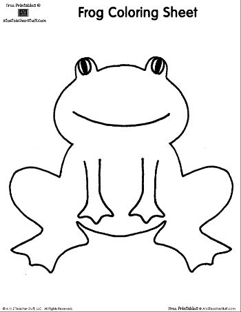 1000+ images about Frogs on Pinterest