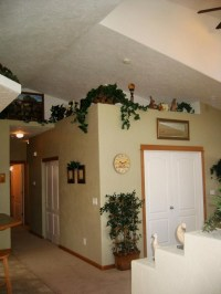 Shows vaulted ceilings in living area with plant shelves ...