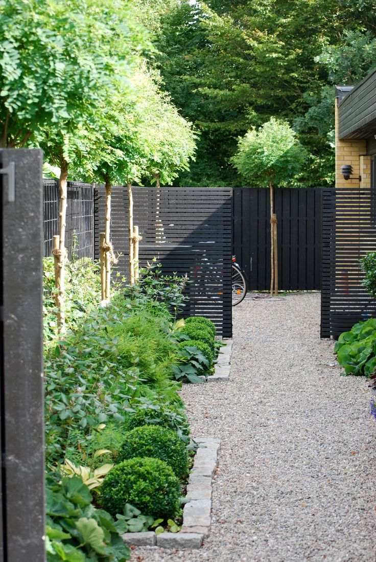 25 Best Ideas About Garden Screening On Pinterest Garden