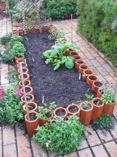 107 Best Images About Clay Pipe Planter On Pinterest Garden