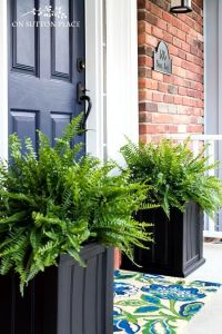 Best 25+ Front porch planters ideas only on Pinterest ...