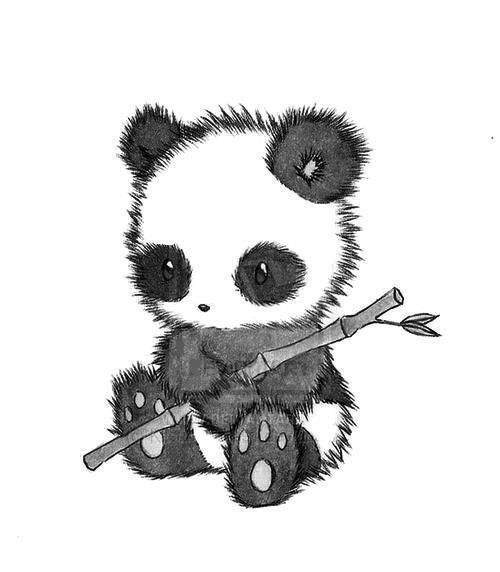Cute Pet Animals Wallpapers Gallery For Gt Anime Animals Cute Panda Love Them Animals
