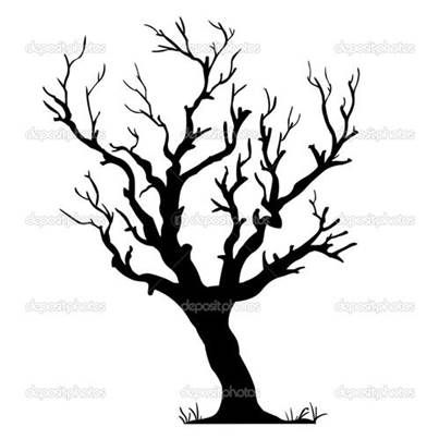 Silhouette Leafless Trees Stock Photography