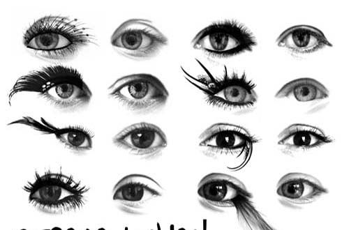 27 Sets Of Free Eye Brushes For Photoshop (eyelash,iris