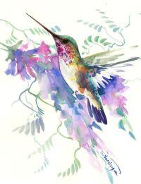 1000+ ideas about Hummingbird Painting on Pinterest ...