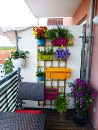 25+ best ideas about Balcony garden on Pinterest