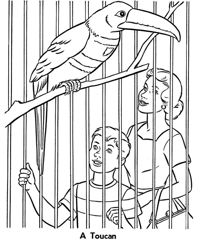 2164 best images about coloring Pages on Pinterest