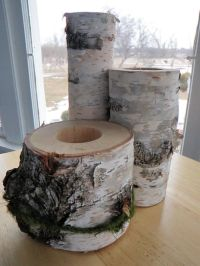 Birch Wood Centerpiece - Set of 3 for Weddings or Cottage ...