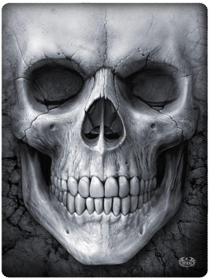 25+ Best Ideas About Badass Skulls On Pinterest