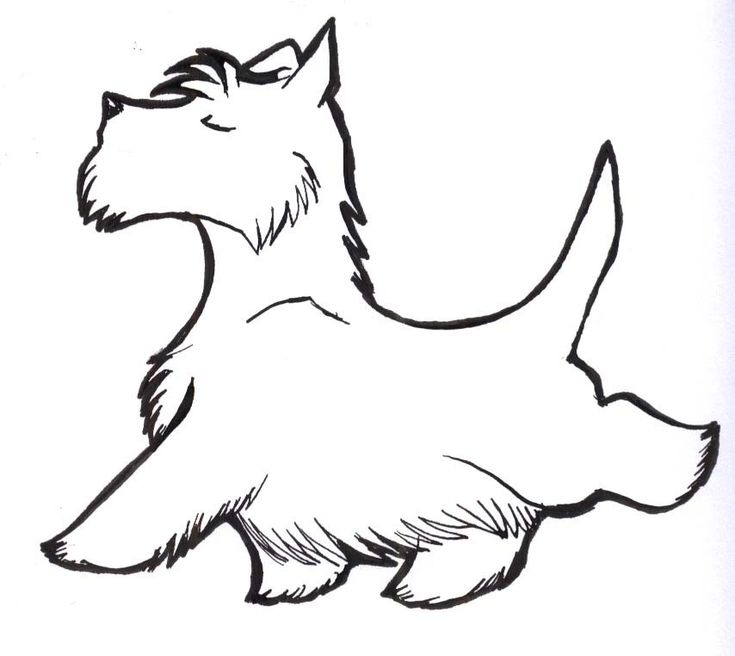 1000+ images about Scottie Dogs: Clip Art. Graphics, Line