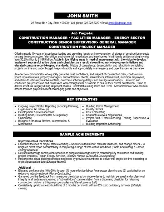 Project Manager Example Resume