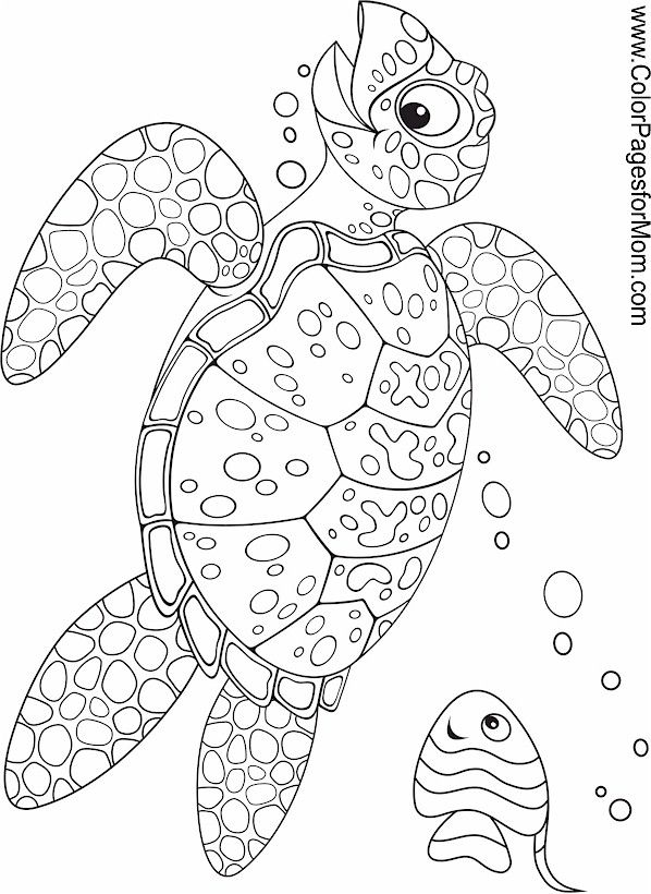 1000+ images about Animal Mandelas, Zentangles etc. to