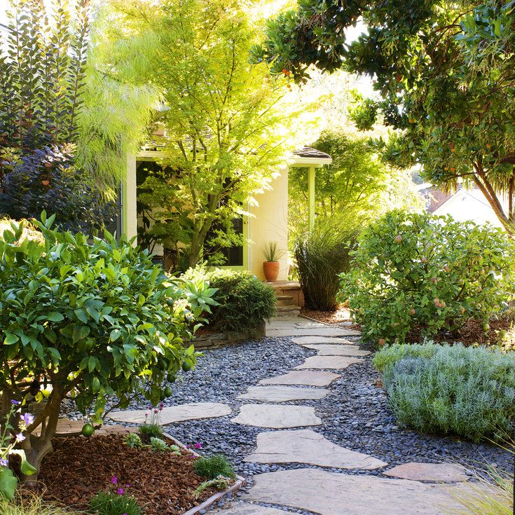 Best 25+ No grass landscaping ideas on Pinterest