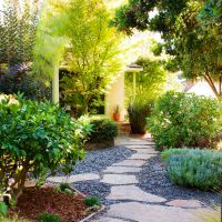 Best 25+ No grass landscaping ideas on Pinterest | No ...
