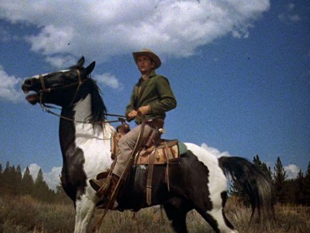 Little Joe Cartwright and his horse -- Bonanza