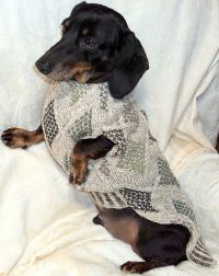Sewing Pattern for Dachshund Sweater & Snood by by ...