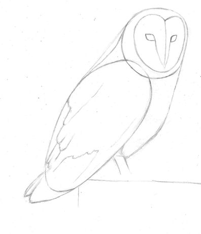 25+ best ideas about Simple owl drawing on Pinterest
