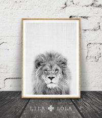 Lion Print, Safari Nursery Animal Wall Art, Baby Shower
