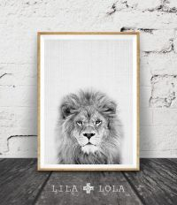 Lion Print, Safari Nursery Animal Wall Art, Baby Shower ...