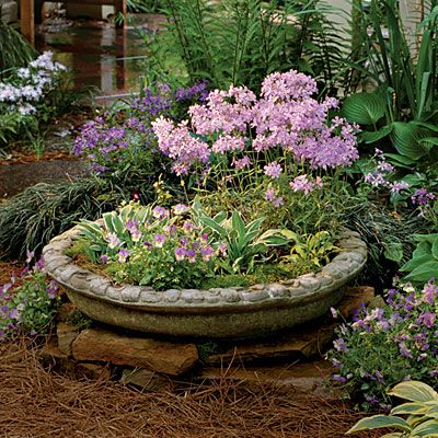 953 Best Images About Container Gardening On Pinterest Succulent