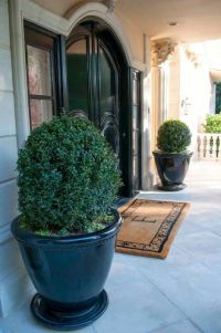 493 best images about Front Door Planters on Pinterest ...
