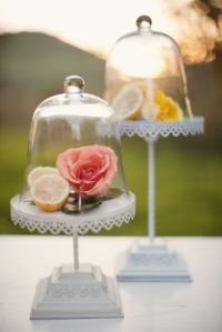 17 Best images about Accessories. Glass Domes on Pinterest ...