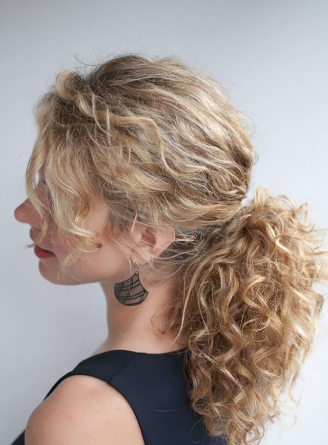 25 best ideas  about Curly Hair  Ponytail  on Pinterest 5