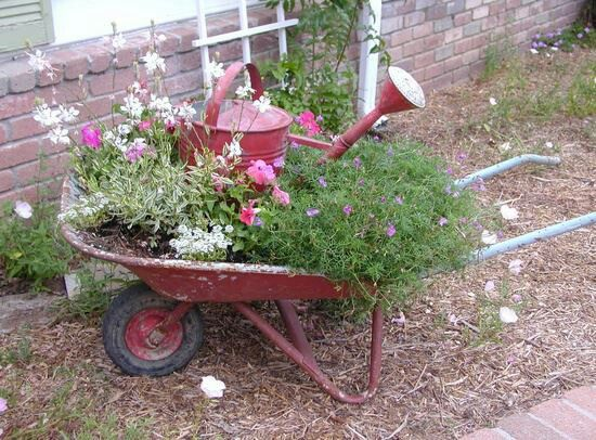 25 Best Ideas About Wheelbarrow On Pinterest Wheelbarrow Garden