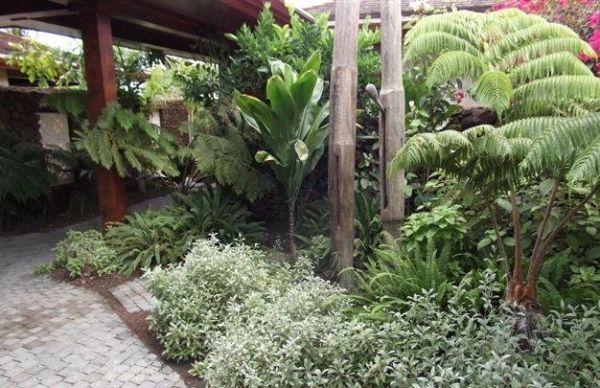 native hawaiian plants integral