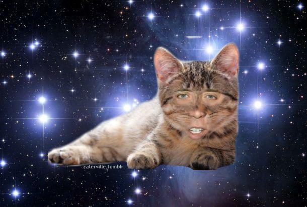 Nicolas Cage Cat In Space