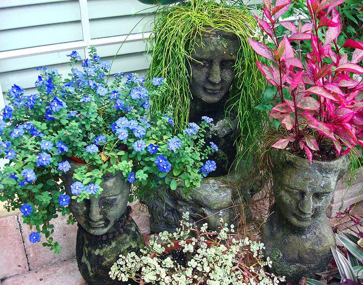 246 Bästa Bilderna Om Florida Container Gardening And Other