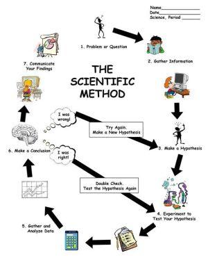 scientific method worksheet | Scientific Method Diagram