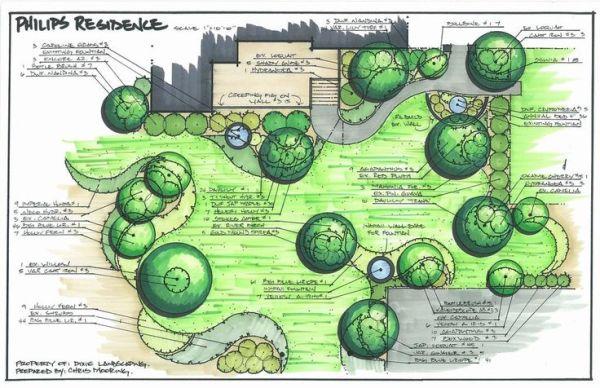 landscape plan drawings - google