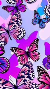 Colourful Butterfly Wallpaper Designs | www.imgkid.com ...
