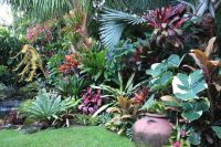 Dennis Hundscheidt Tropical Garden - Sunnybank, Qld ...