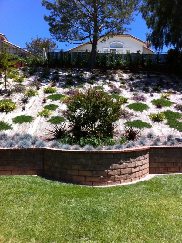 beautiful hillside landscape job
