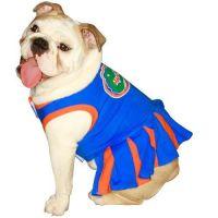 $15.27-$19.99 Pets First NCAA University of Florida Gators ...