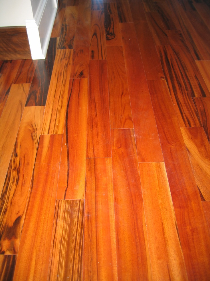 10 best images about Tigerwood Flooring on Pinterest