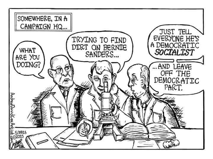 358 best political cartoon images on Pinterest