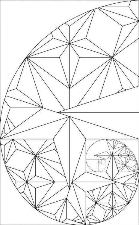 17 Best images about Golden Ratio, Phi, Pi, Fibonacci on