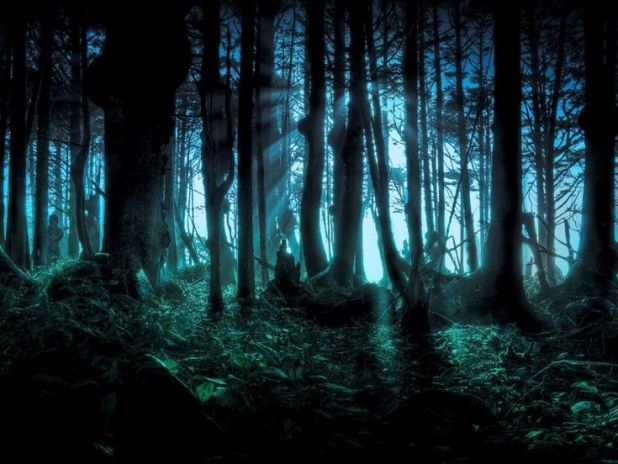 soldiers paranormal encounters