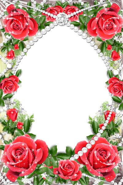 Transparent Delicate Frame With Red Roses Wallpapers And