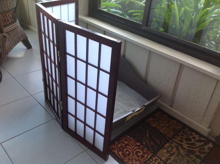 how to clean window screens in an apartment